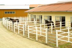 Stables - Riding facilities - Halls - Farm Buildings - Wolf System Germany