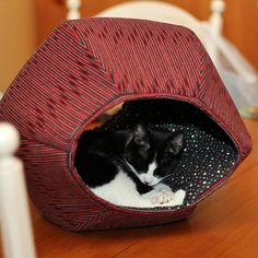 Posey is a tuxedo cat and she likes using her Cat Ball® cat bed. Photo taken by Instagram user Love2Foster