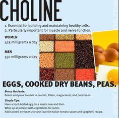 Necessary Daily Nutrients