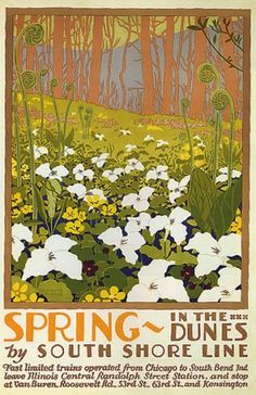 SPRING IN THE DUNES FLOWERS BY SOUTH SHORE LINE CHICAGO ILLINOIS VINTAGE POSTER REPRO PrimoPoster,http://www.amazon.com/dp/B001TA0SXE/ref=cm_sw_r_pi_dp_eBDytb0GRF089CW1