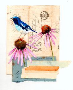 Bluebird & Coneflower Print | by mealisab