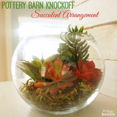 Pottery Barn Knock Off Succulent Arrangement at The Happy Housie labeled