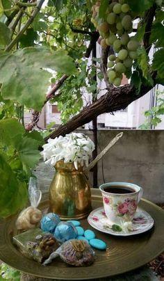 Maravilla de café