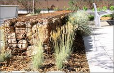 Gabion wall with grasses