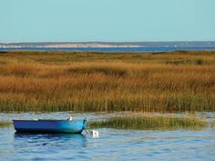 Image result for landscape bay cape cod