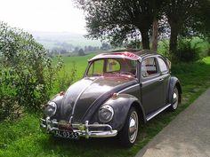 Volkswagen Beetle / Kever 1964 - color elephant grey - Import Germany (2001 TR-DW200) #vw #beetle #kever #classiccar #carrelation