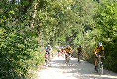 """Il ciclismo marchigiano è pronto per fare ancora un salto nel tempo: il gruppo di ciclisti d'epoca de """"i Forzati della Strada"""" torna sui sentieri del Fermano domenica 27 luglio.  Ecco tutte le info utili per partecipare  http://www.mondociclismo.com/con-i-forzati-della-strada-il-ciclismo-depoca-nelle-marche-diventa-flash-mob-20140724.htm  #ciclismostorico #forzatistrada #montelparo #ciclismo"""