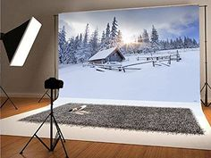 Forest Cabin, Snow Forest, Diy Photo Backdrop, Photo Backdrops, Christmas Background, Forests, Cabins, Wind Turbine, Europe