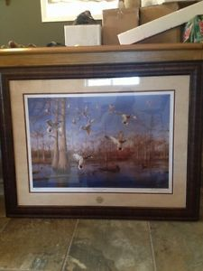 2017 Ducks Unlimited Artist Year David Ma Pitching Into Cypress Framed Print