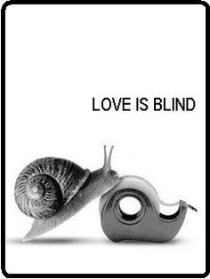 love is blind...  mom and dad cut out this out from a cartoon and gave it to me  about 5 years ago.   It is still on my desk under the glass and it still makes me smile <3<3