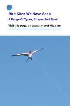 Bird Shaped Kites - What We've Seen And What's Available Dragon Kite, Delta Kite, Bird Kite, Kites For Kids, Stunt Kite, Kite Designs, Kite Making, Minimal Decor, Other People