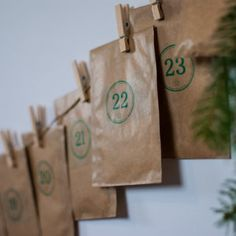 Magic Garden Seeds Adventskalender - saugruen.de