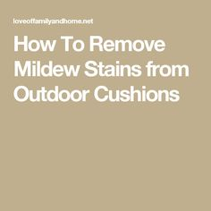 Image Result For Remove Mold Stains From Fabric