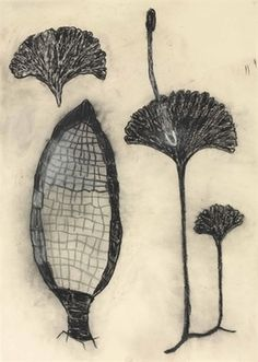 Find the latest shows, biography, and artworks for sale by Terry Winters. For the past 30 years, Terry Winters has occupied the same New York studio since hi… Nature Drawing, Plant Drawing, Nature Illustration, Botanical Illustration, Ap Studio Art, Drawing Journal, Artist Sketchbook, Abstract Drawings, Gravure