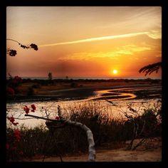 Comment: lookzippy said Pendant 10 jours, voir se paysage tous les soirs ca retape un homme #senegal #holidays #sunset