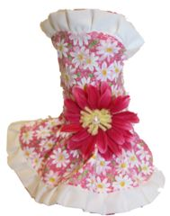 One of our favorites from the new Spring line of dog dresses exclusive to Puppy Love : Daisy Dog Dress Daisy Dog, Dog Outfits, Spring Line, Dog Dresses, Pet Clothes, Dog Stuff, Puppy Love, Your Dog, Angel