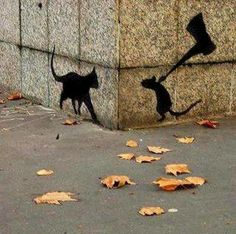 cat.out line on wall...mouse around the corner....:)))