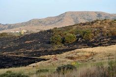 Tamaraceite: Incendio en San José del Álamo