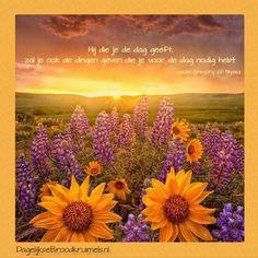 Hij die je de dag geeft, zal je ook de dingen geven die je voor de dag nodig hebt - Gregory of Nyssa
