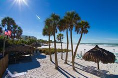 Photos of Vacation Condominiums | Sea Shell Condominium Siesta Key