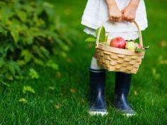 Von der Hand in den Mund: Obst selbst zu pflücken macht Spaß und eröffnet ganz neue Geschmackserlebnisse. Diese 7 Obstgärten laden zur Landpartie.