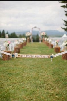 Love the way the stumps are placed! #myidea :)