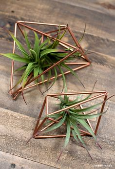 Make your own gorgeous copper plant hangers with this simple DIY craft from handcrafted lifestyle expert Lia Griffith.