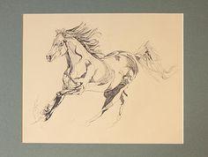 Horse Art, Yaheya Pasha