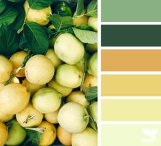{ fresh hues } - https://www.design-seeds.com/slow-lifestyle/market-hues/fresh-hues-19