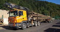 Jobangebot im sonnigen Südwesten: TO B. stellt Dold Holzwerke GmbH in Buchenbach mit aktuellen Stellenangeboten vor.