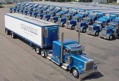 PETERBILT, KENWORTH - Western Distributing Transportation