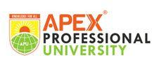 Apex Professional University, Pasighat, East Siang, Arunachal Pradesh
