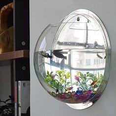 Chunlin Fish Bubble - Wall Mounted Acrylic Fish Bowl Fish Tank Aquarium Home Decoration (Mirror, Home Aquarium, Aquarium Design, Aquarium Fish Tank, Fish Tank Terrarium, Aquarium Setup, Terrariums, Fish Tank Wall, Bubble Wall, Bubble Fish