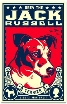 Obey the Jack Russell!