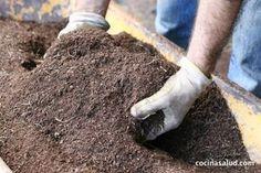 Cómo preparar la tierra para el huerto ecológico o macetas