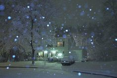 Christmas Night Snowfall Magic - Stan Pustylnik