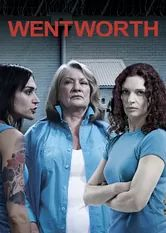 """Wentworth on Netflix  (Australian TV show- if you like """"Orange is the New Black"""" or """"Prison Break"""", you will like this show)."""