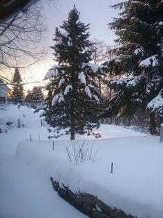 Winter in Oberfranken: Grüße vom Fichtelberg