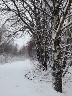 Turkuun saatiin vihdoin kunnolla lunta ja vähän kinoksiakin!  #turku #winter #snow #nature #finnishnature #naturelovers #outdoors Nature Pictures, Snow, Landscape, Lifestyle, Winter, Frozen, Outdoor, Beauty, Winter Time