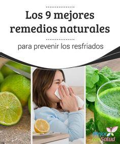 Las Mejores 7 Ideas De Como Prevenir La Gripa Remedios Salud Remedios Naturales