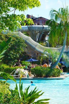Crush n Gusher at Disney's Typhoon Lagoon Water Park tami@goseemickey.com