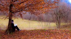 Ultima lettura d'autunno.