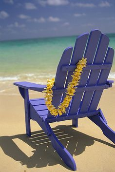Beach Chair - Close-up blue chair with plumeria hanging on side facing ocean