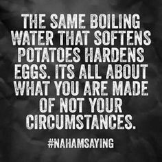The same boiling water that softens potatoes hardens eggs. It's all about what you are made of not your circumstances. #fitness #health #fit #motivation #exercise #fatloss #weightloss #bodybuilding #muscle #gym #train #training