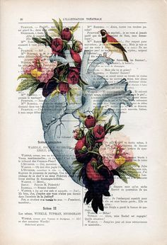 Heart peony Anatomy Botanical Flower vintage drawing book art gothic vintage art print wall art poster decor Halloween gift for him, gothic - Herz Peony Drawing, Drawing Flowers, Kunst Poster, Medical Art, Vintage Art Prints, Poster Vintage, Vintage Drawing, Botanical Flowers, Botanical Decor