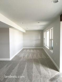 the best basement paint color and carpet choices house ideas rh pinterest com