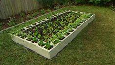 Block Cinder Gardening Garden Beds | Raised Bed Garden Ideas, Raised Garden Bed Images and Growing Tips: