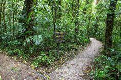 Costa Rica travel tips: Monteverde Cloud Forest Reserve, Costa Rica