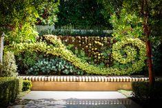 succulent wall curlicue: contemporary landscape by Urban Landscape Vertical Succulent Gardens, Vertical Garden Design, Succulent Wall, Succulents Garden, Planter Garden, Succulent Plants, Vertical Planting, Fence Garden, Planter Ideas