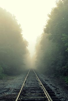 0rient-express:  Leave only tracks   by Sarah Elizabeth...